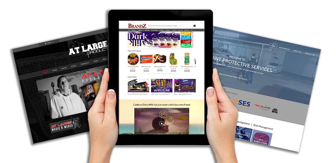 website payment plans